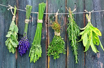 Best Kitchen Herbs To Smoke